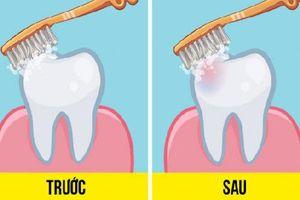 Đã có câu trả lời cho tranh cãi nên đánh răng trước hay sau khi ăn sáng