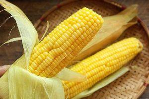 Ngô ngon nhưng cực độc nếu ăn nhiều, có thể gây viêm ruột hoặc các bệnh mãn tính