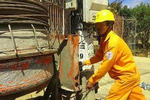 Ngành điện Đắk Lắk chung tay xây dựng nông thôn mới