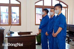 Vận chuyển ma túy, các bị cáo lãnh án nặng