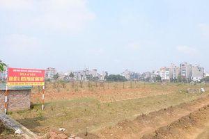Phó Thủ tướng chỉ đạo xử lý nghiêm việc lợi dụng thông tin đẩy giá bất động sản