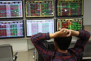 Nhà đầu tư mới cần nâng cao hiểu biết để đưa ra những quyết định hợp lý