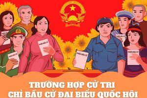 Trường hợp cử tri chỉ tham gia bầu cử đại biểu Quốc hội và đại biểu HĐND cấp tỉnh, huyện
