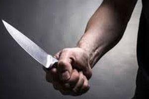 Tạm giữ hình sự kẻ dùng dao truy sát gia đình ở Vĩnh Phúc