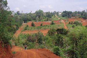 Đắk Nông: Rầm rộ san đồi, mở đường trái phép
