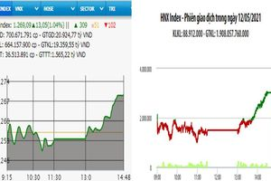 Hồi phục cuối phiên, VN-Index tăng hơn 13 điểm
