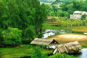 Buổi trưa miền sơn cước trong vườn thơ của Nguyễn Xuân Thâm