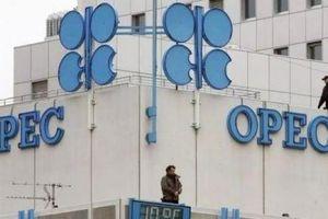 OPEC + cắt giảm sản lượng hiện giờ ra sao?