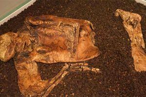 Bí ẩn xác ướp 2.000 tuổi bị cắt làm đôi, biến thành da thuộc ở nước Anh