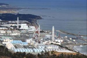 Hàn Quốc, New Zealand quan ngại kế hoạch xả thải từ nhà máy điện Fukushima