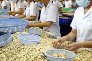 Nhập khẩu hạt điều 4 tháng gần 1,9 tỷ USD, vượt cả năm 2020