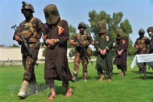 Việt Nam ủng hộ Liên hợp quốc thúc đẩy điều tra truy cứu tội ác của IS tại Iraq