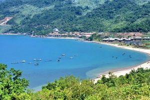Đà Nẵng: Xác định giá đất đối với 3 dự án tại bán đảo Sơn Trà