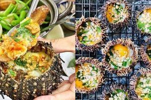 Những món ngon tuyệt hảo và lạ lẫm từ nhum biển, bạn đã từng thử chưa?