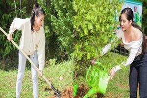 Dàn mỹ nhân Miss Earth Việt Nam trang phục giản đi trồng cây