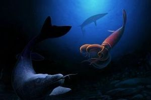 Tìm thấy loài quái vật khổng lồ dưới biển sâu