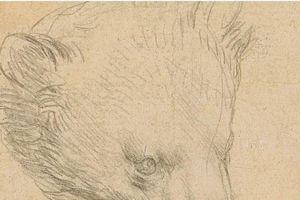 'Đầu gấu' của danh họa Leonardo được đấu giá hơn 16 triệu USD