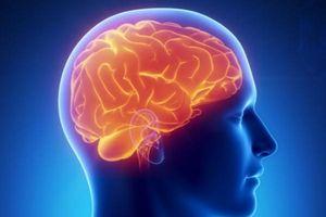 8 thói quen gây hại cho não bạn nên tránh