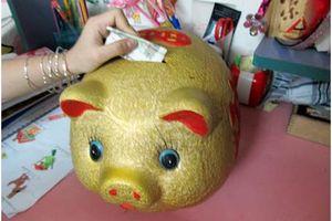 Mỗi ngày thêm vào lợn 30 nghìn, sau 10 năm vợ chồng trẻ chắc tay 5 tỷ