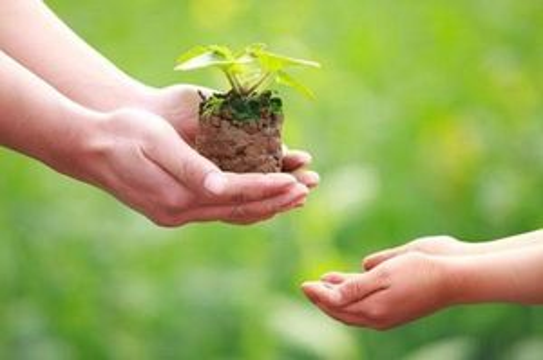 Muốn làm việc thiện tâm phải gieo giống thiện lành
