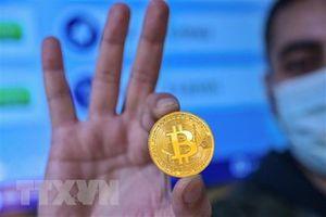Đồng bitcoin phục hồi lên khoảng 50.000 USD sau khi lao dốc tới 17%