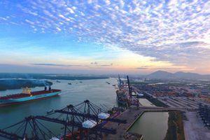 Cảng nước sâu nâng tầm doanh nghiệp Việt