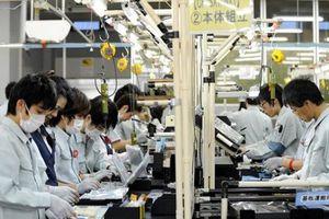 An Giang dành hơn 164 tỷ đồng hỗ trợ lao động đi làm việc tại nước ngoài