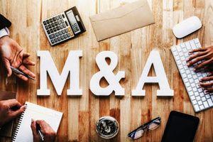 Thị trường mua bán sáp nhập hồi phục và triển vọng tăng trưởng tốt