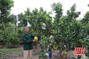 Huyện Nga Sơn nâng cao chất lượng công tác tuyên truyền miệng