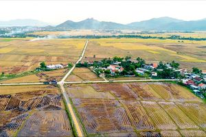 Vạn Ninh: Tập trung nâng cao chất lượng tiêu chí giao thông