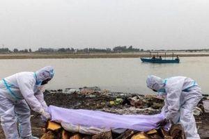 Ấn Độ giăng lưới trên sông Hằng vớt gần 100 thi thể trôi dạt