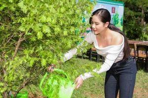 Dàn mỹ nhân trồng cây xanh bảo vệ môi trường