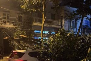 Lốc xoáy khiến hàng chục căn nhà tốc mái, cây đổ, người bị thương