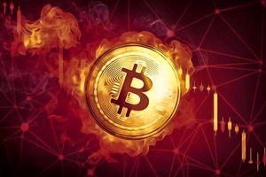Giá Bitcoin hôm nay ngày 13/5: Tesla dừng thanh toán bằng Bitcoin, thị trường chìm trong biển lửa