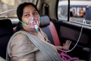 Cô gái Ấn Độ vô vọng giành giật mạng sống cho cha mẹ