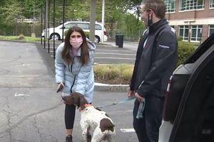 Nữ MC bắt kẻ trộm chó trên sóng trực tiếp