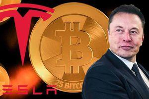 Elon Musk bị chỉ trích vì đột ngột quay lưng với Bitcoin