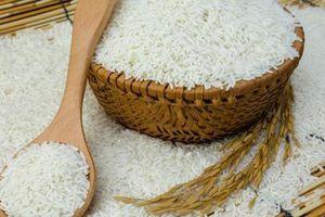 Xuất khẩu gạo sang Bangladesh tăng gần 300 lần về lượng