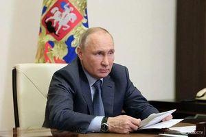 Tổng thống Putin lọt danh sách ứng cử viên cho giải Nobel Hòa bình