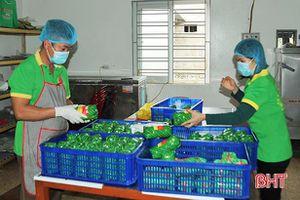Hà Tĩnh: Hơn 2,2 tỷ đồng thực hiện chương trình khuyến công