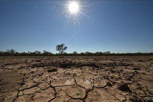 Hội nghị COP26 - 'cơ hội cuối cùng' để ngăn chặn nhiệt độ Trái Đất tăng