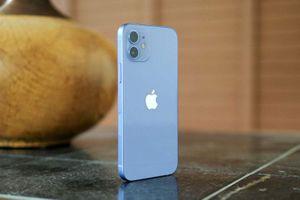 Khác biệt nhỏ trên iPhone 12 màu tím so với phiên bản cũ