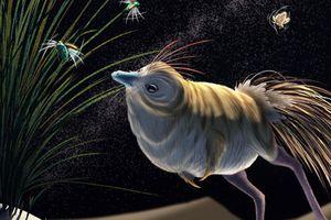 Loài khủng long lạ thường có thể săn đêm và thính hơn loài cú