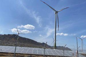 Vừa bán điện mặt trời, Trung Nam bất ngờ bán tiếp điện gió cho đối tác Nhật