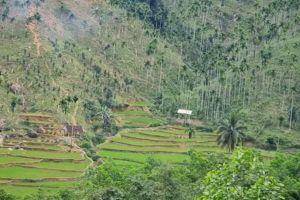 Quảng Ngãi: Người dân vùng cao lo lắng vì hiện tượng rung lắc địa chấn