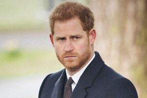 Hoàng tử Harry lại có phát ngôn gây sốc, ví việc sống trong Hoàng gia 'như trong sở thú'
