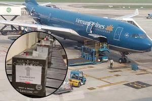 Bộ GTVT đuổi việc nhân viên mạo danh Bộ trưởng gửi hàng qua sân bay