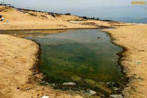 Hồ tôm ở Quảng Bình xả thải gây ô nhiễm, 'đầu độc' bờ biển