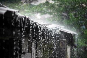 Chạm vào tiếng mưa