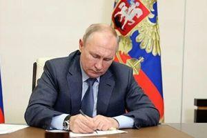 Tổng thống V. Putin: Ukraine đang bị biến thành đối cực của Nga